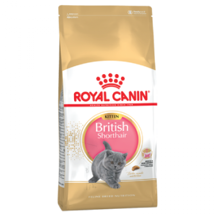 Royal Canin British Shorthair Kitten 2kg.